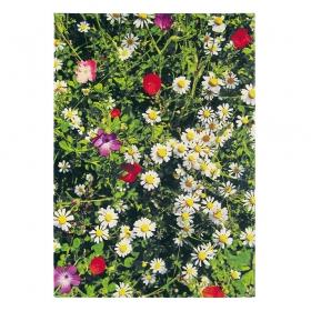tapis kaleidoscope botanic brink & campman