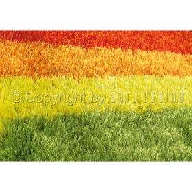 tapis shaggy funky arte espina multicolore