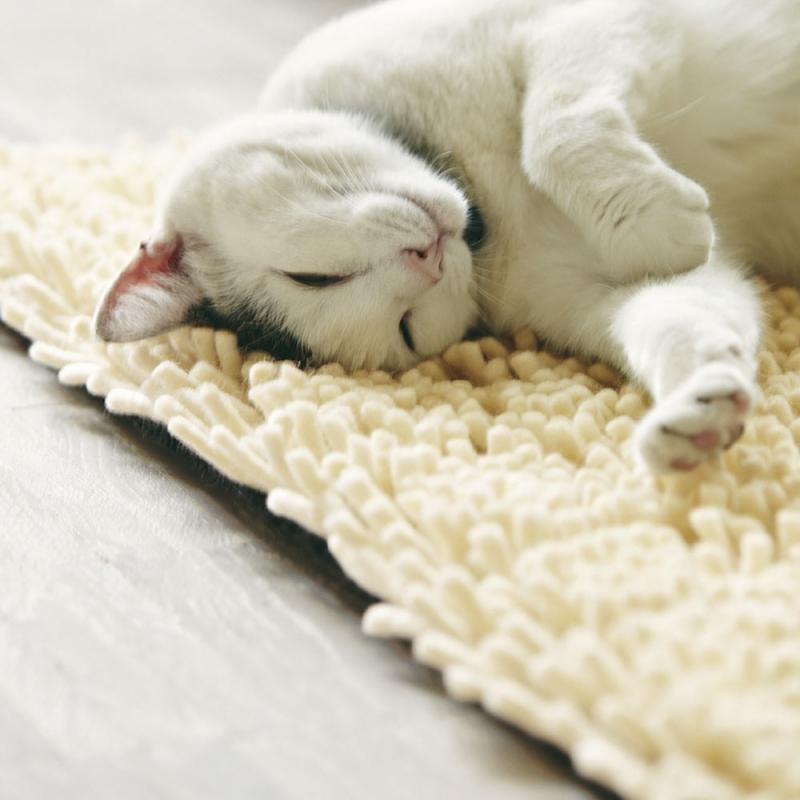 tapis shaggy cross blanc brink campman 140x200. Black Bedroom Furniture Sets. Home Design Ideas