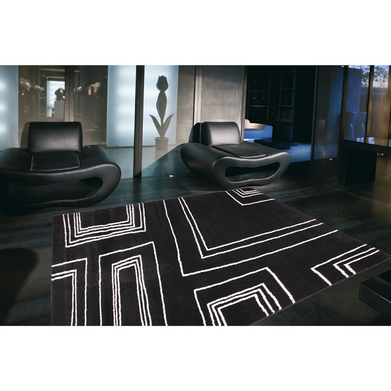 tapis arizona moderne noir et blanc 160x230. Black Bedroom Furniture Sets. Home Design Ideas