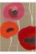 tapis poppies red sanderson - avalnico